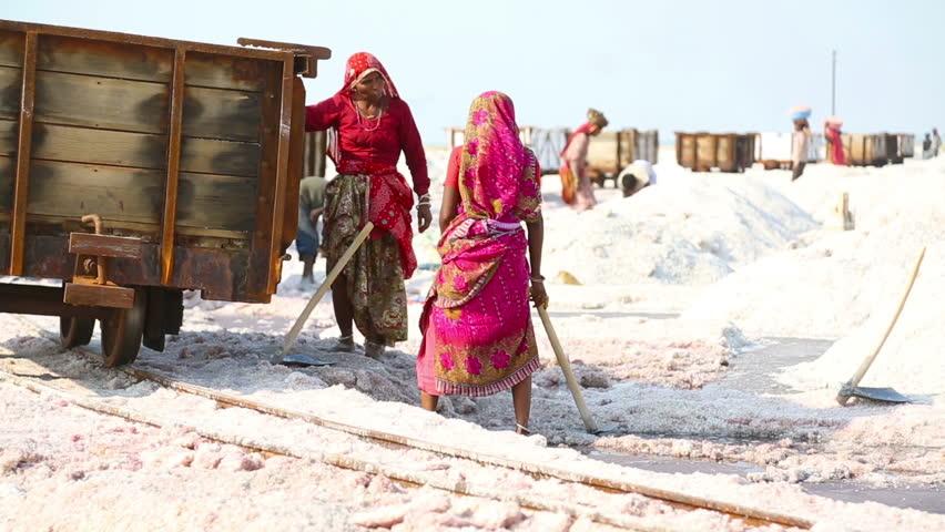 SAMBHAR, INDIA - NOVEMBER 19, 2012: Indian women mining and hauling salt at a saline on lake in Sambhar, India, November 19, 2012