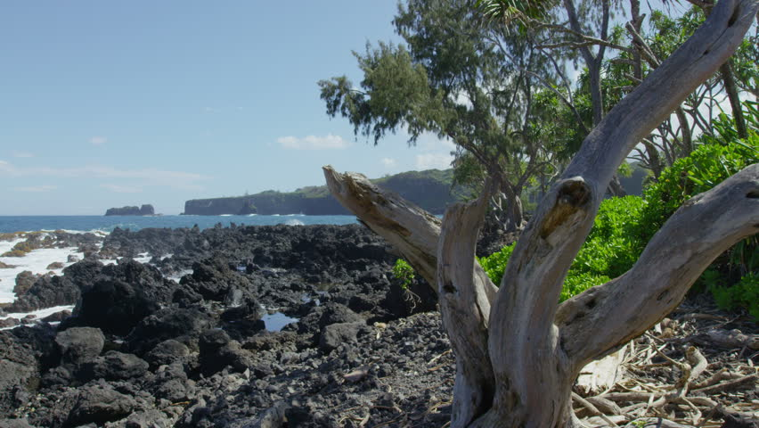 Maui Beach Park, Keanae Peninsula, Road to Hana, Red Camera 4k, UHD - 4K stock video clip