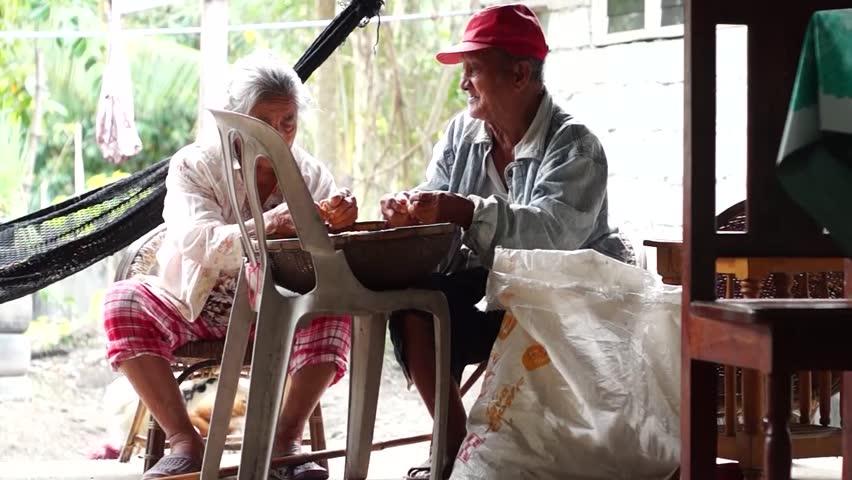 IFUGAO, PHILIPPINES - DECEMBER 24, 2014: Old Rural Couple manually threshing corn for livestocks