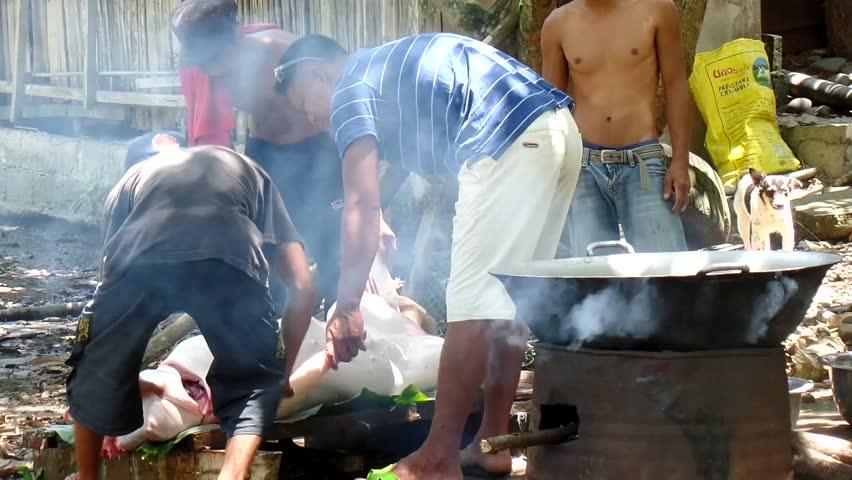 ALFONSO LISTA, IFUGAO - MARCH 28, 2015: March 28, 2015: Swine's head cut apart