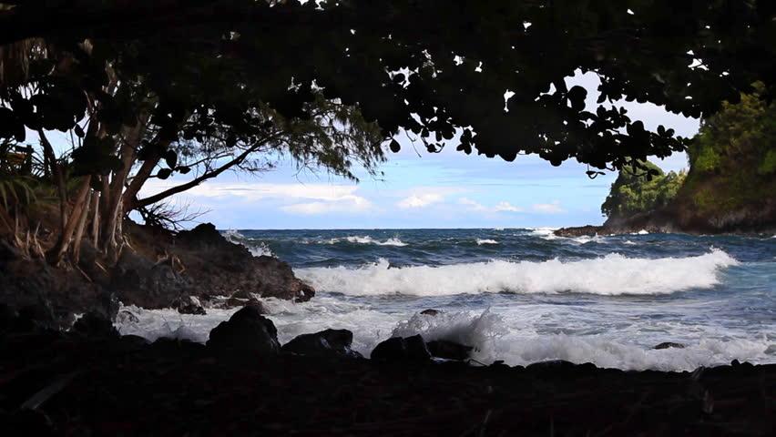 Hawaiian Beach, shady area - HD stock video clip
